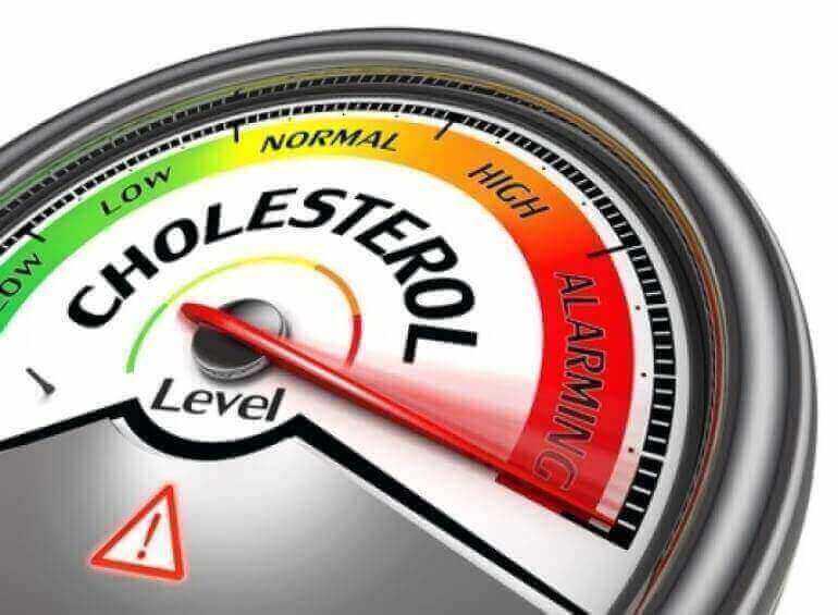 Il Colesterolo
